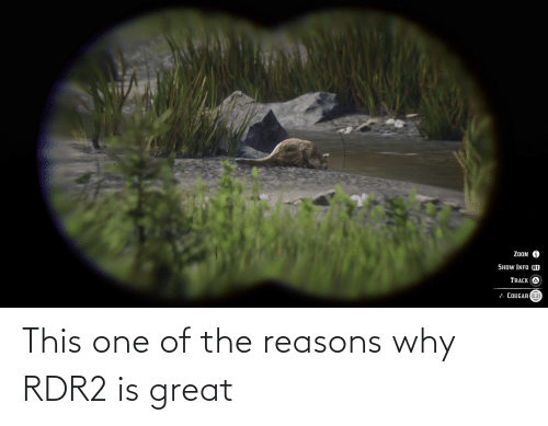 Rdr2: This one of the reasons why RDR2 is great