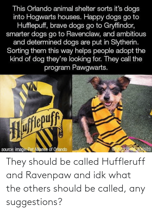 Ambitious: This Orlando animal shelter sorts it's dogs  into Hogwarts houses. Happy dogs go to  Hufflepuff, brave dogs go to Gryffindor,  smarter dogs go to Ravenclaw, and ambitious  and determined dogs are put in Slytherin.  Sorting them this way helps people adopt the  kind of dog they're looking for. They call the  program Pawgwarts.  Hofitepuf  source: image. Pet Allance of Orlando  ists They should be called Huffleruff and Ravenpaw and idk what the others should be called, any suggestions?