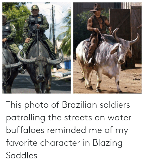 character: This photo of Brazilian soldiers patrolling the streets on water buffaloes reminded me of my favorite character in Blazing Saddles