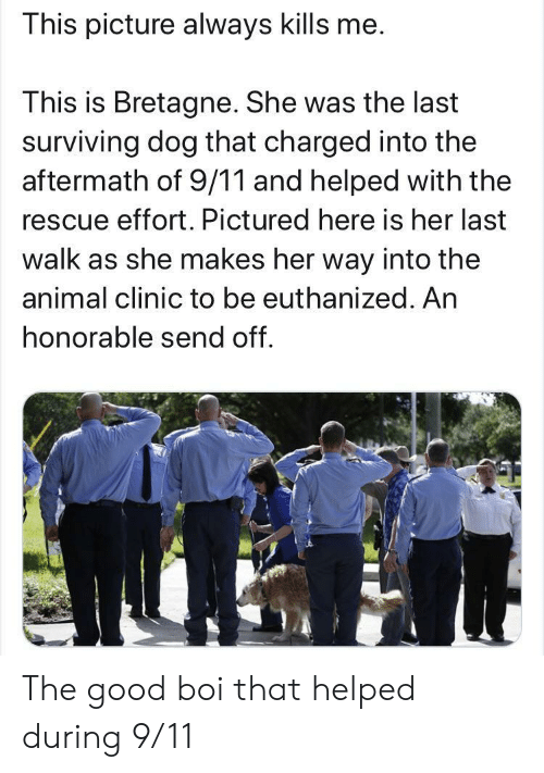 honorable: This picture always kills me.  This is Bretagne. She was the last  surviving dog that charged into the  aftermath of 9/11 and helped with the  rescue effort. Pictured here is her last  walk as she makes her way into the  animal clinic to be euthanized. An  honorable send off. The good boi that helped during 9/11