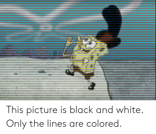 Black and White: This picture is black and white. Only the lines are colored.