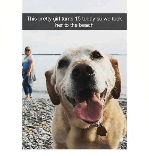 Memes, Beach, and Girl: This pretty girl turns 15 today so we took  her to the beach  瀾