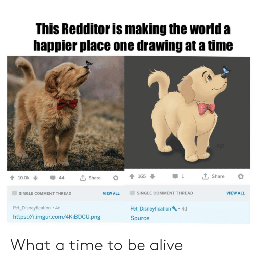 Alive, Http, and Imgur: This Redditor is making the world a  happier place one drawing at a time  T, Share  165  1  T, Share  10.0k  44  SINGLE COMMENT THREAD  VIEW ALL  SINGLE COMMENT THREAD  VIEW ALL  Pet_Disneyfication 4d  Pet Disneyfication 4d  http://i.imgur.com/4KIBDCU.png  Source What a time to be alive