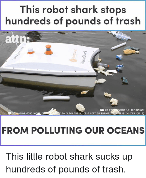 Memes, Trash, and Shark: This robot shark stops  hundreds of pounds of trash  att  COUR  SH-EATING WATER D  INE TECHNOLOGY  TO-CLEAN THE BUSİEST PORT IN EUROPENeustRESS 1NSİDER(2016)  FROM POLLUTING OUR OCEANS This little robot shark sucks up hundreds of pounds of trash.