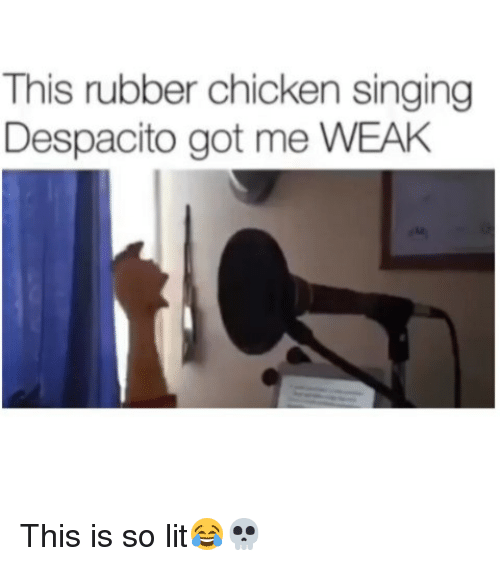 So Lit: This rubber chicken singing  Despacito got me WEAH This is so lit😂💀