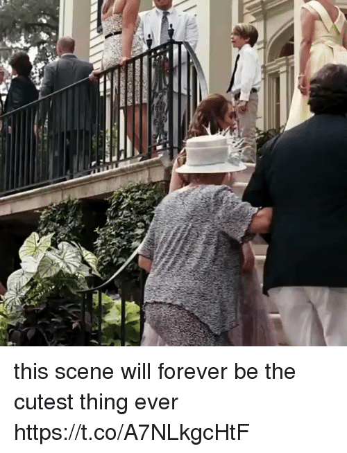 Forever, Girl Memes, and Will: this scene will forever be the cutest thing ever https://t.co/A7NLkgcHtF