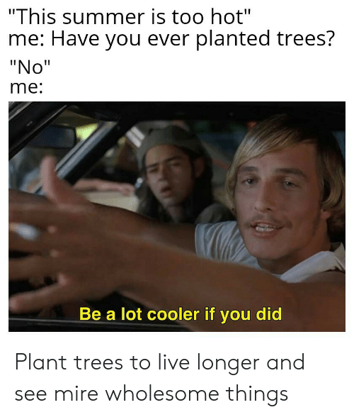 "Summer, Live, and Trees: ""This summer is too hot""  me: Have you ever planted trees?  ""No""  me:  Be a lot cooler if you did Plant trees to live longer and see mire wholesome things"