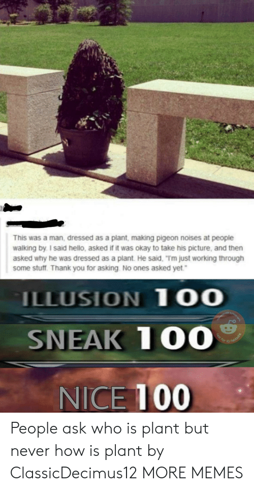 """Anaconda, Dank, and Hello: This was a man, dressed as a plant, making pigeon noises at people  walking by I said hello, asked if it was okay to take his picture, and then  asked why he was dressed as a plant. He said, """"Tm just working through  some stuff. Thank you for asking No ones asked yet.  ILLUSION 1 00  SNEAK 100  NICE 10 People ask who is plant but never how is plant by ClassicDecimus12 MORE MEMES"""