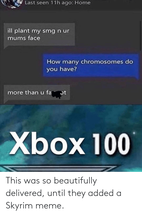 Skyrim Meme: This was so beautifully delivered, until they added a Skyrim meme.