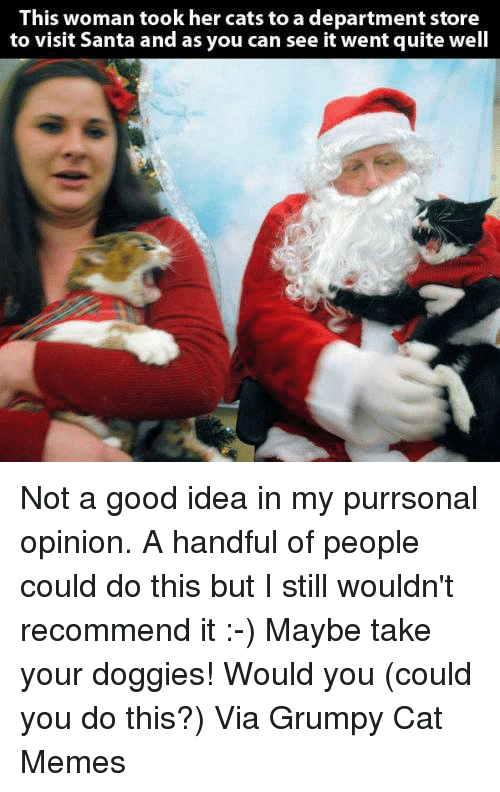 Grumpy Cats: This woman took her cats to a department store  to visit Santa and as you can see it went quite well Not a good idea in my purrsonal opinion. A handful of people could do this but I still wouldn't recommend it :-) Maybe take your doggies! Would you (could you do this?) Via Grumpy Cat Memes