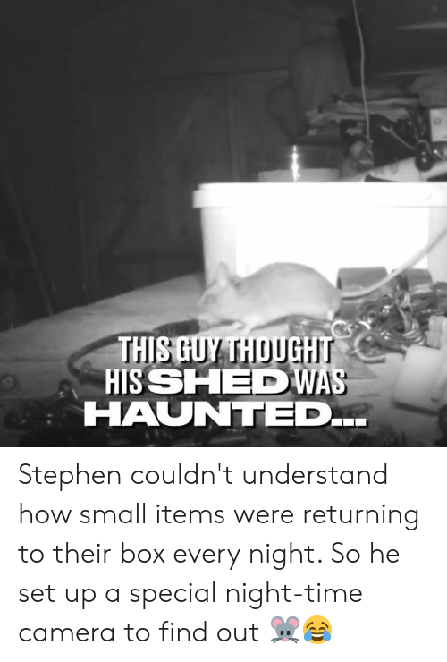 Dank, Stephen, and Camera: THISGUY THOUGH  HISSHE WAS  HAUNTED Stephen couldn't understand how small items were returning to their box every night. So he set up a special night-time camera to find out 🐭😂