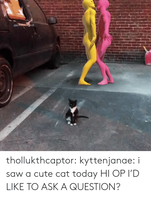 Cute, Saw, and Tumblr: thollukthcaptor:  kyttenjanae: i saw a cute cat today HI OP I'D LIKE TO ASK A QUESTION?