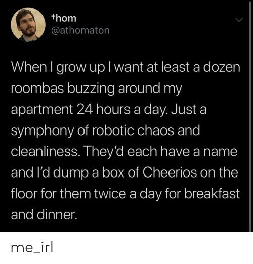 24 hours: thom  @athomaton  When I grow upl want at least a dozen  roombas buzzing around my  apartment 24 hours a day. Just a  symphony of robotic chaos and  cleanliness. They'd each have a name  and I'd dump a box of Cheerios on the  floor for them twice a day for breakfast  and dinner. me_irl