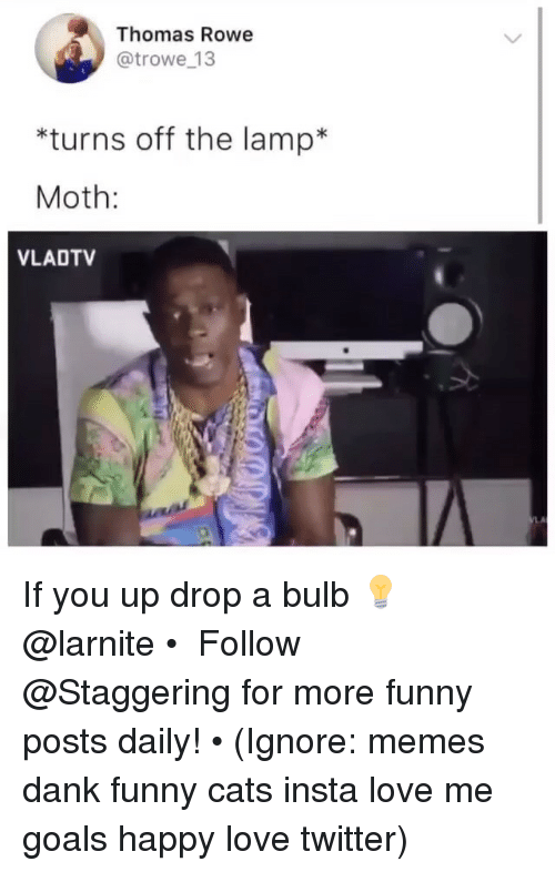 Cats, Dank, and Funny: Thomas Rowe  @trowe 13  *turns off the lamp  Moth:  VLADTV  LA If you up drop a bulb 💡@larnite • ➫➫➫ Follow @Staggering for more funny posts daily! • (Ignore: memes dank funny cats insta love me goals happy love twitter)
