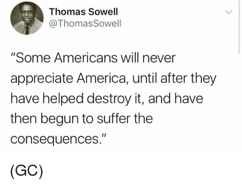 "America, Memes, and Appreciate: Thomas Sowell  @ThomasSowell  ""Some Americans will never  appreciate America, until after they  have helped destroy it, and have  then begun to suffer the  consequences."" (GC)"