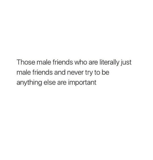 male friends: Those male friends who are literally just  male friends and never try to be  anything else are important