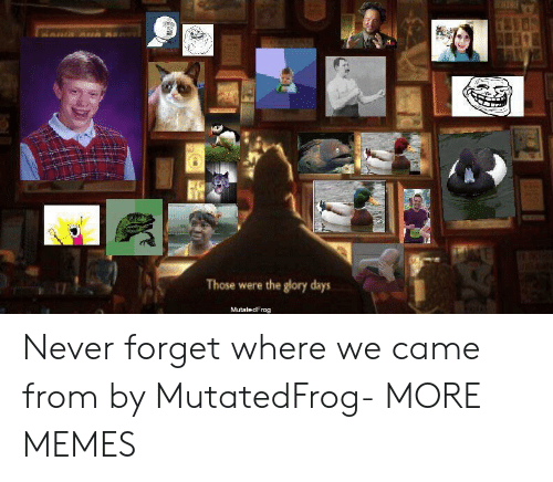 glory days: Those were the glory days  MutatedFrog Never forget where we came from by MutatedFrog- MORE MEMES