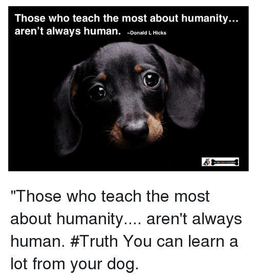 """Memes, Humanity, and Truth: Those who teach the most about humanity.  aren't always human. -Donald L Hicks  .. """"Those who teach the most about humanity.... aren't always human. #Truth You can learn a lot from your dog."""