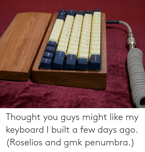 Like My: Thought you guys might like my keyboard I built a few days ago. (Roselios and gmk penumbra.)