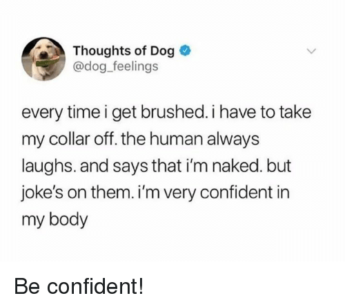 Jokes, Naked, and Time: Thoughts of Dog  @dog feelings  every time i get brushed. i have to take  my collar off. the human always  laughs. and says that i'm naked. but  joke's on them. i'm very confident in  my body Be confident!
