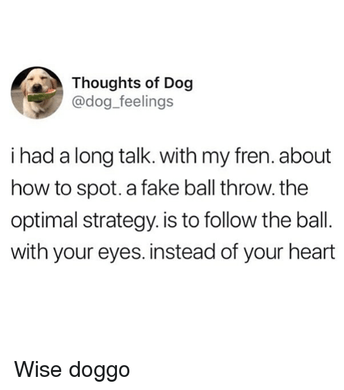 Fake, Funny, and Heart: Thoughts of Dog  @dog_feelings  i had a long talk. with my fren. about  how to spot. a fake ball throw. the  optimal strategy. is to follow the ball.  with your eyes. instead of your heart Wise doggo