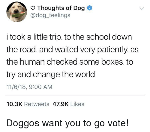 School, World, and Change: Thoughts of Dog  @dog_feelings  i took a little trip. to the school down  the road. and waited very patiently. as  the human checked some boxes. to  try and change the world  11/6/18, 9:00 AM  10.3K Retweets 47.9K Likes Doggos want you to go vote!