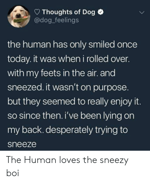 feets: Thoughts of Dog  @dog_feelings  the human has only smiled once  today. it was when i rolled over.  with my feets in the air. and  sneezed. it wasn't on purpose.  but they seemed to really enjoy it  so since then. i've been lying on  my back. desperately trying to  sneeze The Human loves the sneezy boi