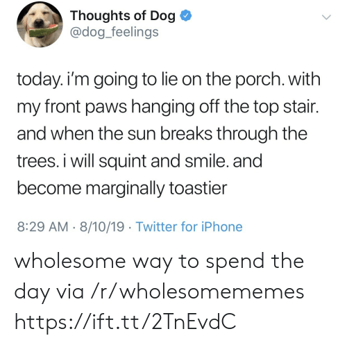 Paws: Thoughts of Dog  @dog_feelings  today. i'm going to lie on the porch. with  my front paws hanging off the top stair.  and when the sun breaks through the  trees. i will squint and smile. and  become marginally toastier  8:29 AM 8/10/19 Twitter for iPhone wholesome way to spend the day via /r/wholesomememes https://ift.tt/2TnEvdC