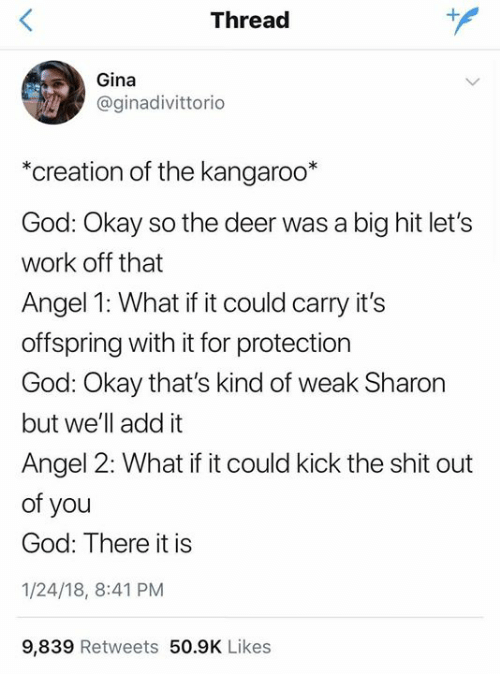 Deer, God, and Shit: Thread  Gina  @ginadivittorio  *creation of the kangaroo*  God: Okay so the deer was a big hit let's  work off that  Angel 1: What if it could carry it's  offspring with it for protection  God: Okay that's kind of weak Sharon  but we'll add it  Angel 2: What if it could kick the shit out  of you  God: There it is  1/24/18, 8:41 PM  9,839 Retweets 50.9K Likes