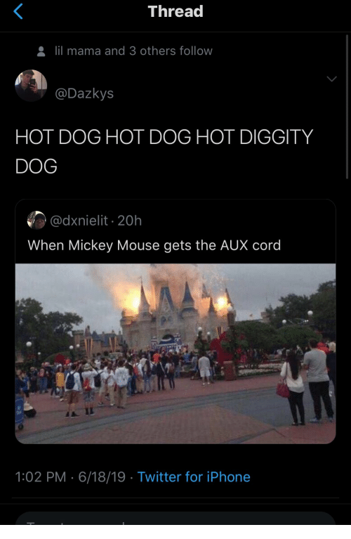 Mickey Mouse: Thread  lil mama and 3 others follow  @Dazkys  HOT DOG HOT DOG HOT DIGGITY  DOG  @dxnielit 20h  When Mickey Mouse gets the AUX cord  1:02 PM 6/18/19 Twitter for iPhone