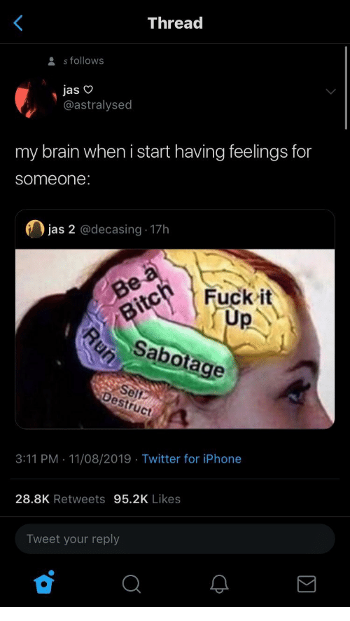 A Fuck: Thread  s follows  jas  @astralysed  my brain when i start having feelings for  someone:  jas 2 @decasing 17h  Be a  Fuck it  Up  Bitch  Sabotage  Self  Destruct  3:11 PM 11/08/2019 Twitter for iPhone  28.8K Retweets 95.2K Likes  Tweet your reply  Run