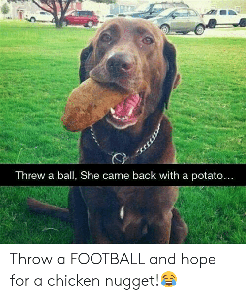 Football, Chicken, and Potato: Threw a ball, She came back with a potato.... Throw a FOOTBALL and hope for a chicken nugget!😂