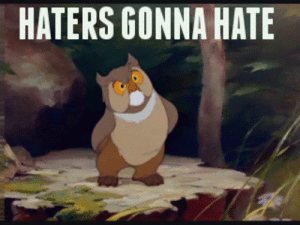 haters gonna hate.gif