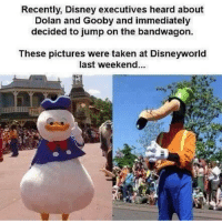 dolan and gooby