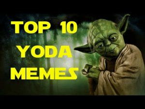 🐣 25+ Best Memes About Funny Yoda Quotes   Funny Yoda ...