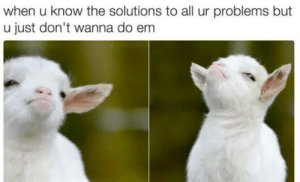 Problems But