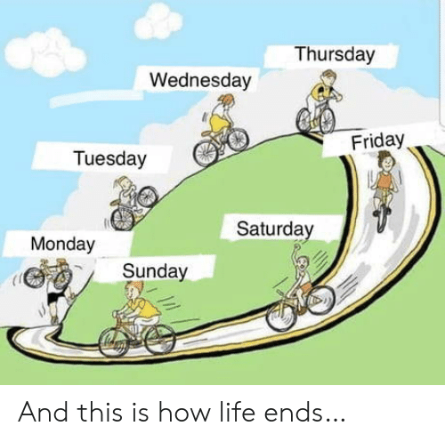 Wednesday: Thursday  Wednesday  Friday  Tuesday  Saturday  Monday  Sunday And this is how life ends…
