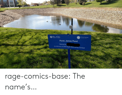 Campaigner: TI  Giving Campaign  Cross of daho  Pond, James Pond  Named by  Co-Winner of 2016 Duck Decorating Contest rage-comics-base:  The name's…