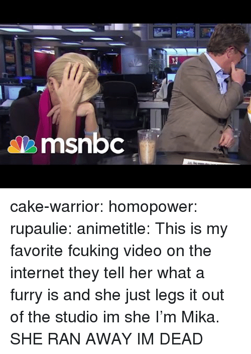 Msnbc: Ti  msnbc cake-warrior:  homopower:  rupaulie:   animetitle: This is my favorite fcuking video on the internet they tell her what a furry is and she just legs it out of the studio im she   I'm Mika.  SHE RAN AWAY IM DEAD