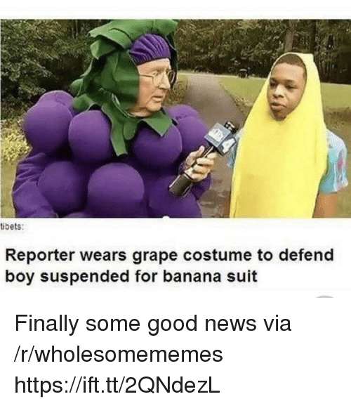 News, Banana, and Good: tibets:  Reporter wears grape costume to defend  boy suspended for banana suit Finally some good news via /r/wholesomememes https://ift.tt/2QNdezL