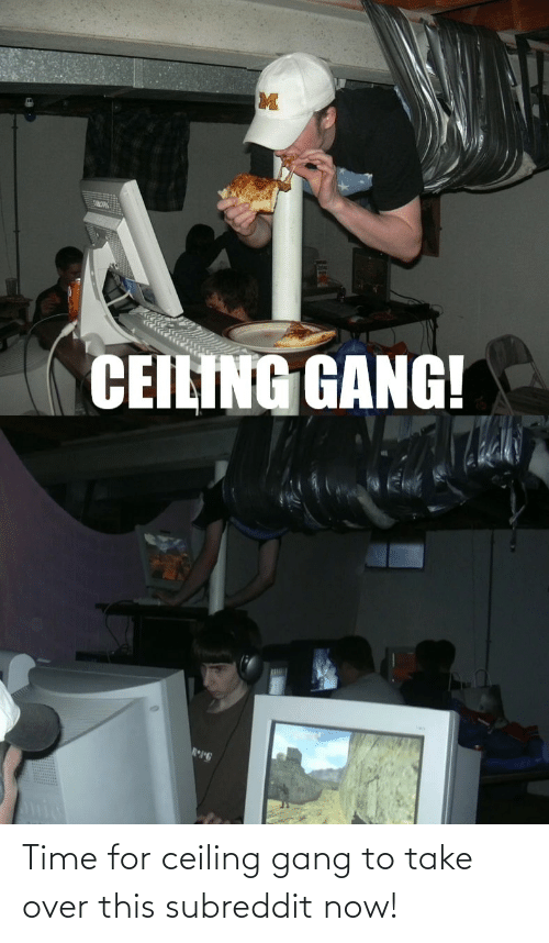 over-this: Time for ceiling gang to take over this subreddit now!