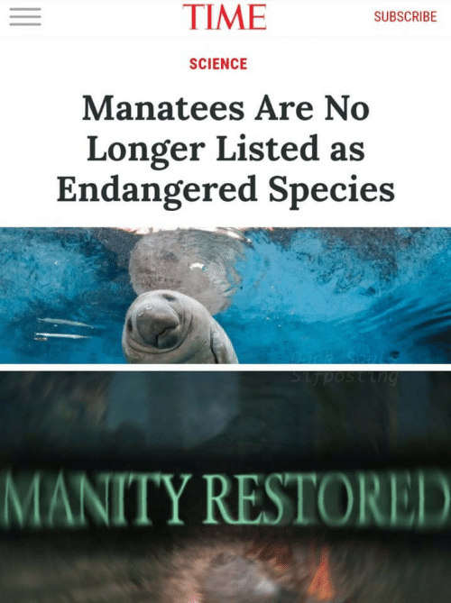 Science, Time, and Species: TIME  SUBSCRIBE  SCIENCE  Manatees Are No  Longer Listed as  Endangered Species  SLposting  MANITY RESTORED