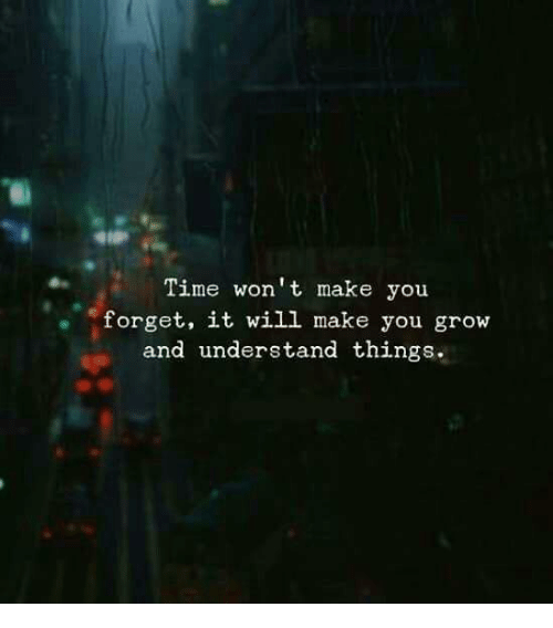 Time, Grow, and Will: Time won't make you  forget, it will make you grow  and understand things.