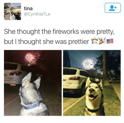 Fireworks, Thought, and She: tina  @CynthiaTLe  She thought the fireworks were pretty,  but I thought she was prettier