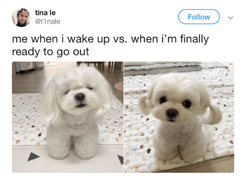 Wake, Wake Up, and Finally: tina le  @t1nale  Follow  me when i wake up vs. when i'm finally  ready to go out
