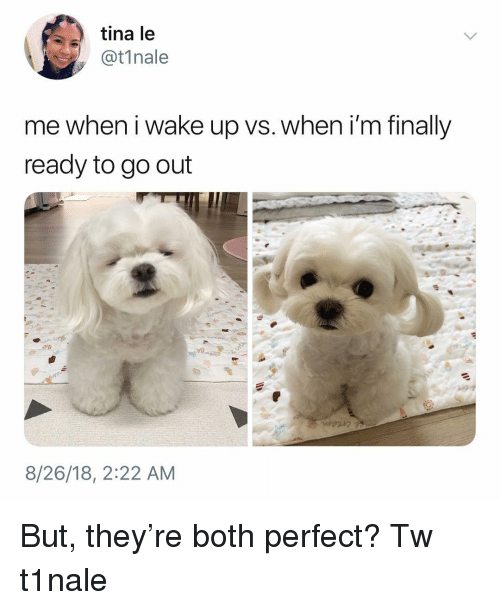 Memes, 🤖, and Wake: tina le  @t1nale  me when i wake up vs. when i'm finally  ready to go out  8/26/18, 2:22 AM But, they're both perfect? Tw t1nale