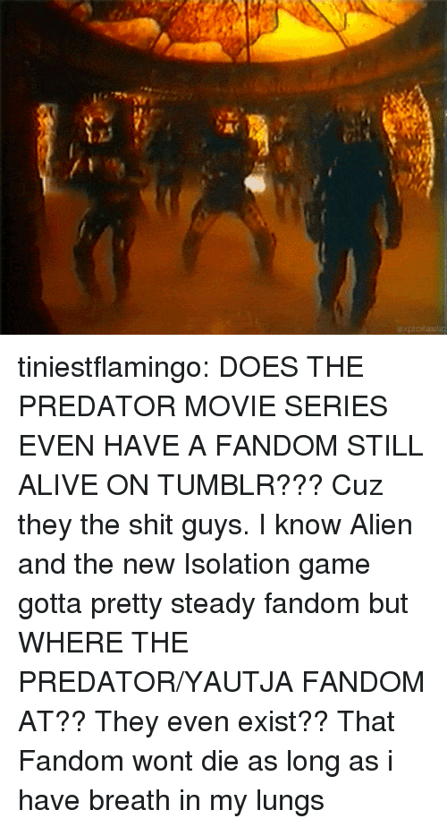Alive, Shit, and Tumblr: tiniestflamingo: DOES THE PREDATOR MOVIE SERIES EVEN HAVE A FANDOM STILL ALIVE ON TUMBLR???  Cuz they the shit guys. I know Alien and the new Isolation game gotta pretty steady fandom but WHERE THE PREDATOR/YAUTJA FANDOM AT?? They even exist??   That Fandom wont die as long as i have breath in my lungs