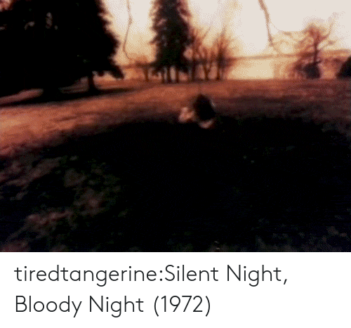 Tumblr, Blog, and Com: tiredtangerine:Silent Night, Bloody Night (1972)
