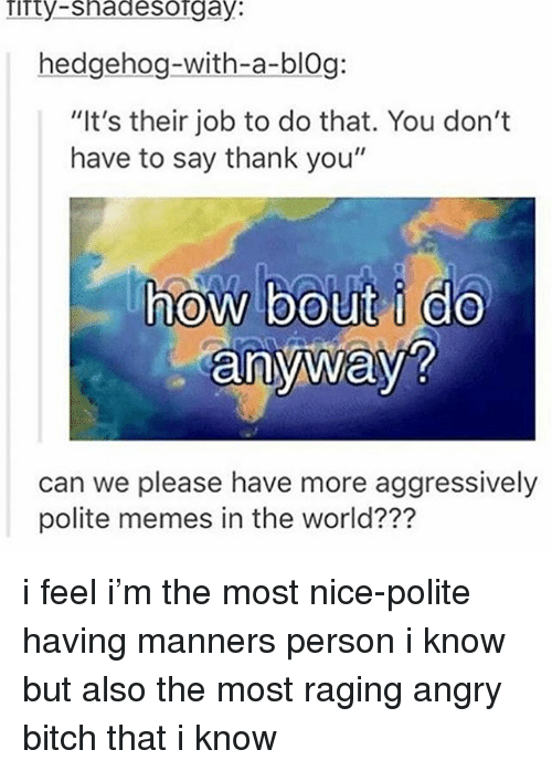 "Bitch, Ironic, and Memes: Tirty-shadesorgay:  hedgehog-with-a-blOg:  ""It's their job to do that. You don't  have to say thank you""  how bout i do  anyway?  0  can we please have more aggressively  polite memes in the world??? i feel i'm the most nice-polite having manners person i know but also the most raging angry bitch that i know"