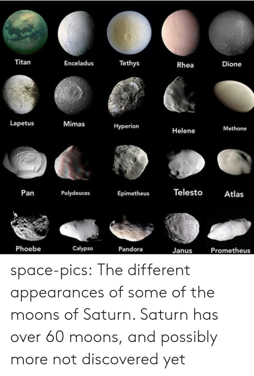 pan: Titan  Tethys  Enceladus  Dione  Rhea  Lapetus  Mimas  Нyperion  Methone  Helene  Telesto  Pan  Polydeuces  Atlas  Epimetheus  Phoebe  Calypso  Pandora  Prometheus  Janus space-pics:  The different appearances of some of the moons of Saturn. Saturn has over 60 moons, and possibly more not discovered yet